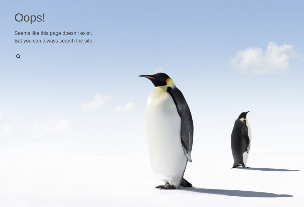 Linux 404 Page